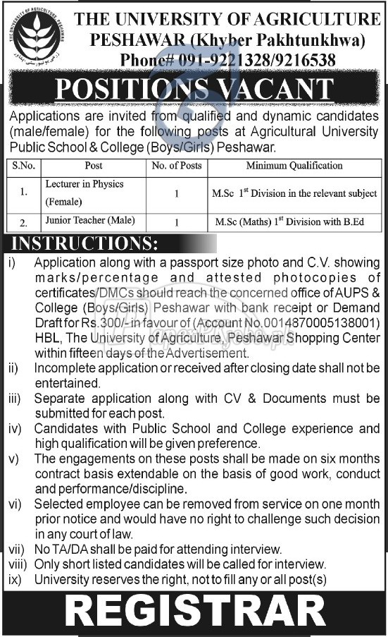 The University of Agriculture Peshawar Jobs 2017