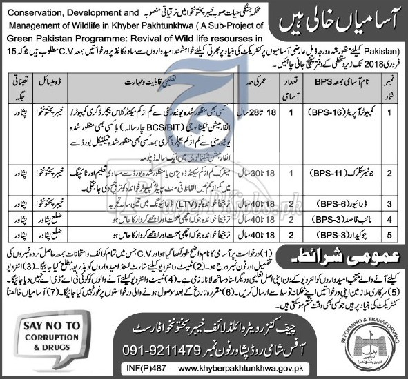 Wildlife Department Peshawar KPK Jobs 2018