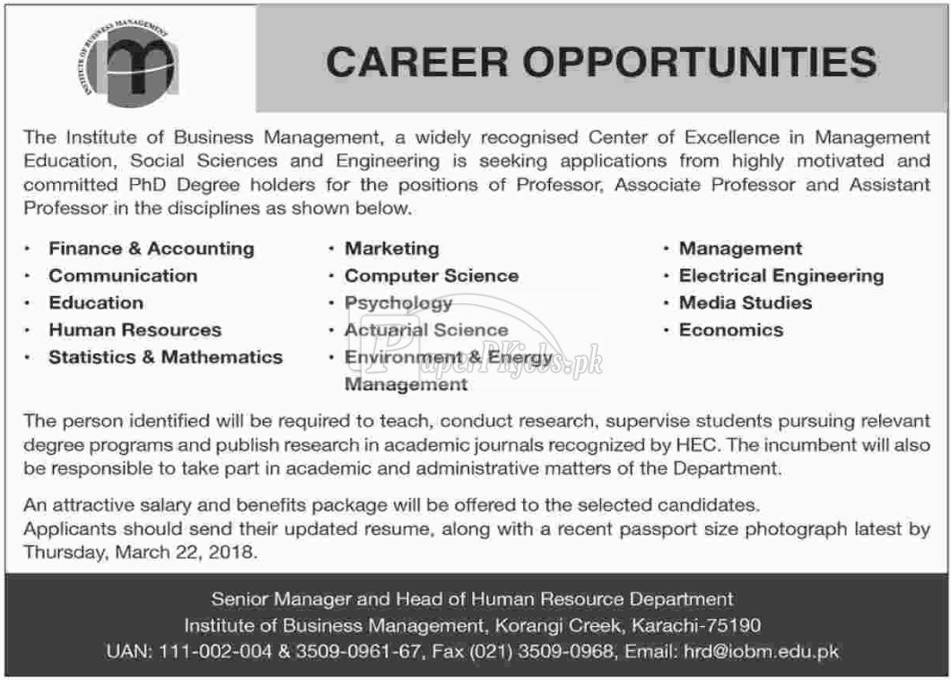 Institute of Business Management IBM Jobs 2018
