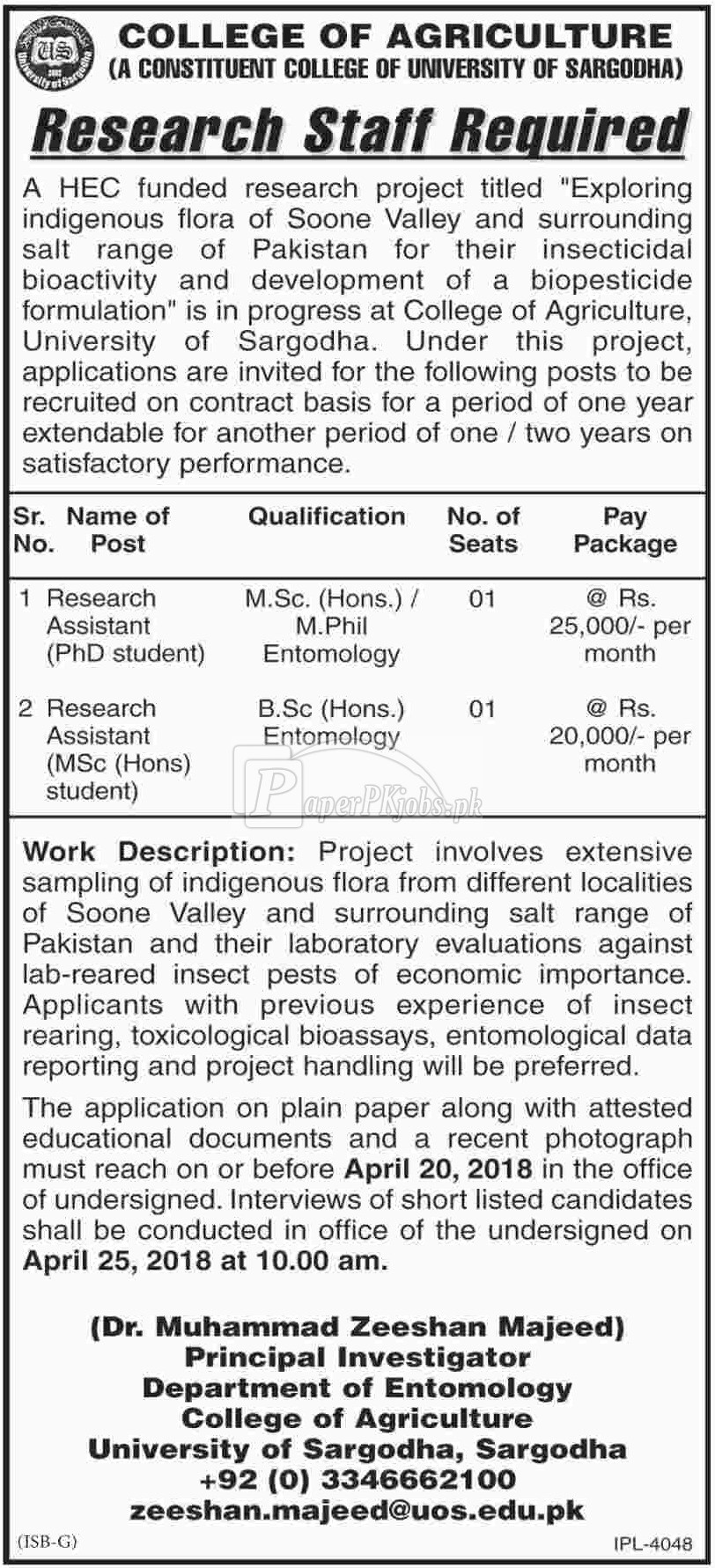 College of Agriculture Sargodha Jobs 2018