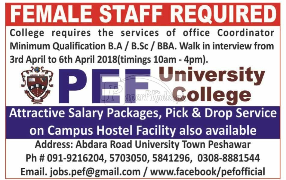 PEF University College Peshawar Jobs 2018