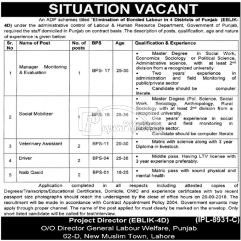 Labour & Human Resource Department Punjab Jobs 2018