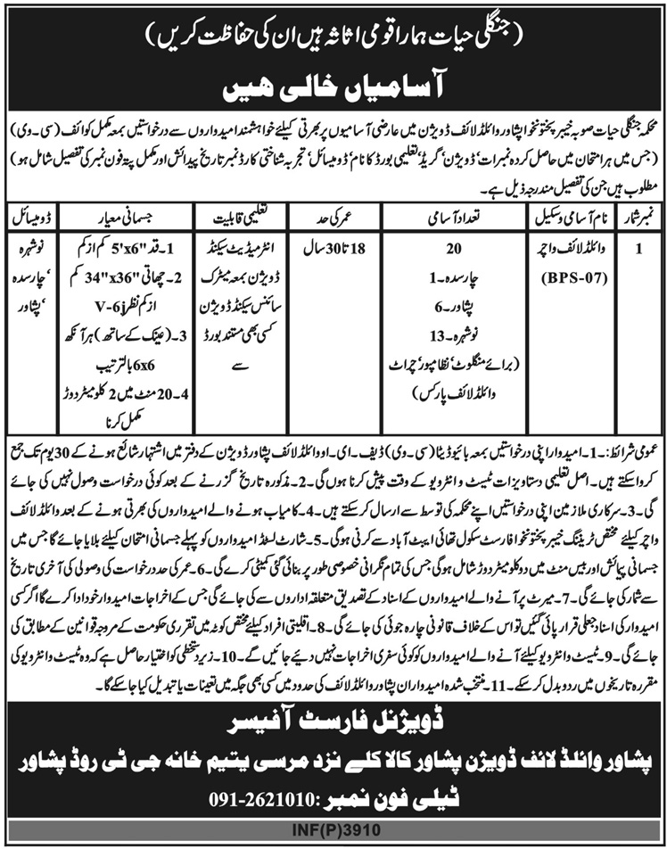 Forest Department Peshawar KPK Jobs 8 October 2018