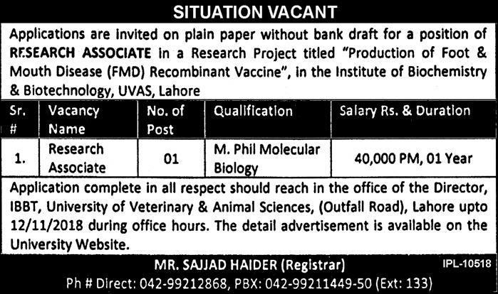 UVAS Lahore Jobs Latest 30 October 2018