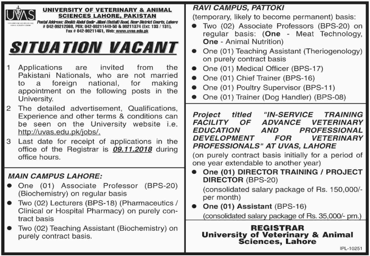 UVAS Lahore Latest Jobs 20 October 2018