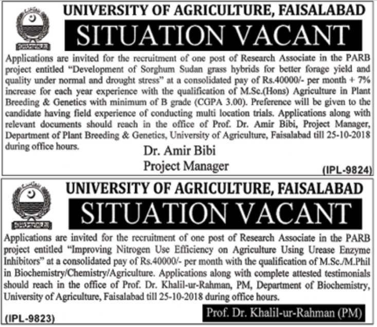 University of Agriculture Faisalabad Research Associate Jobs 2018