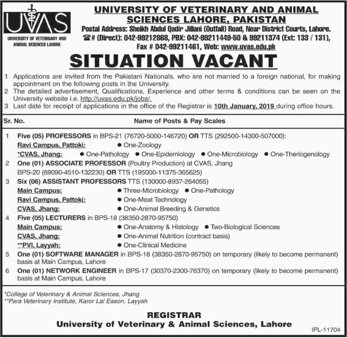 UVAS Lahore Jobs 2018 Pakistan Latest