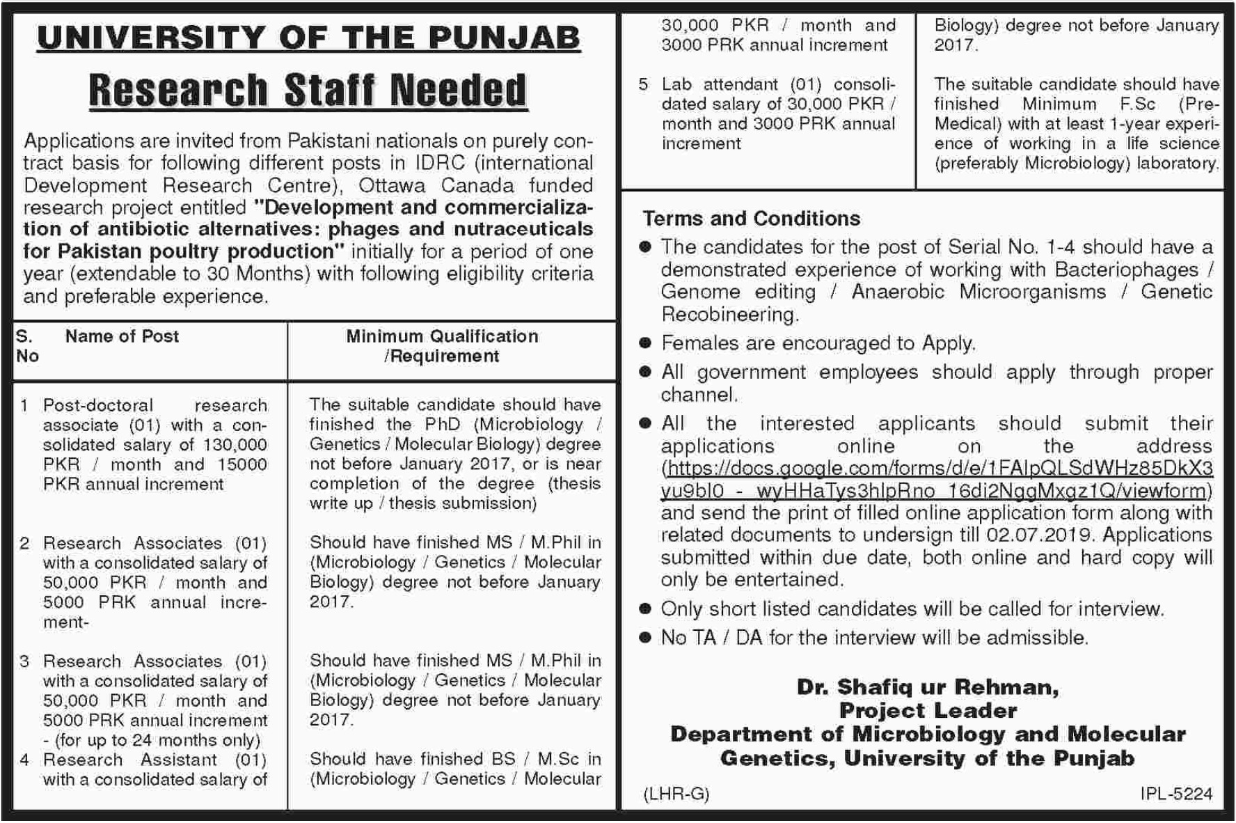 University of the Punjab Jobs 2019 PU Research Staff