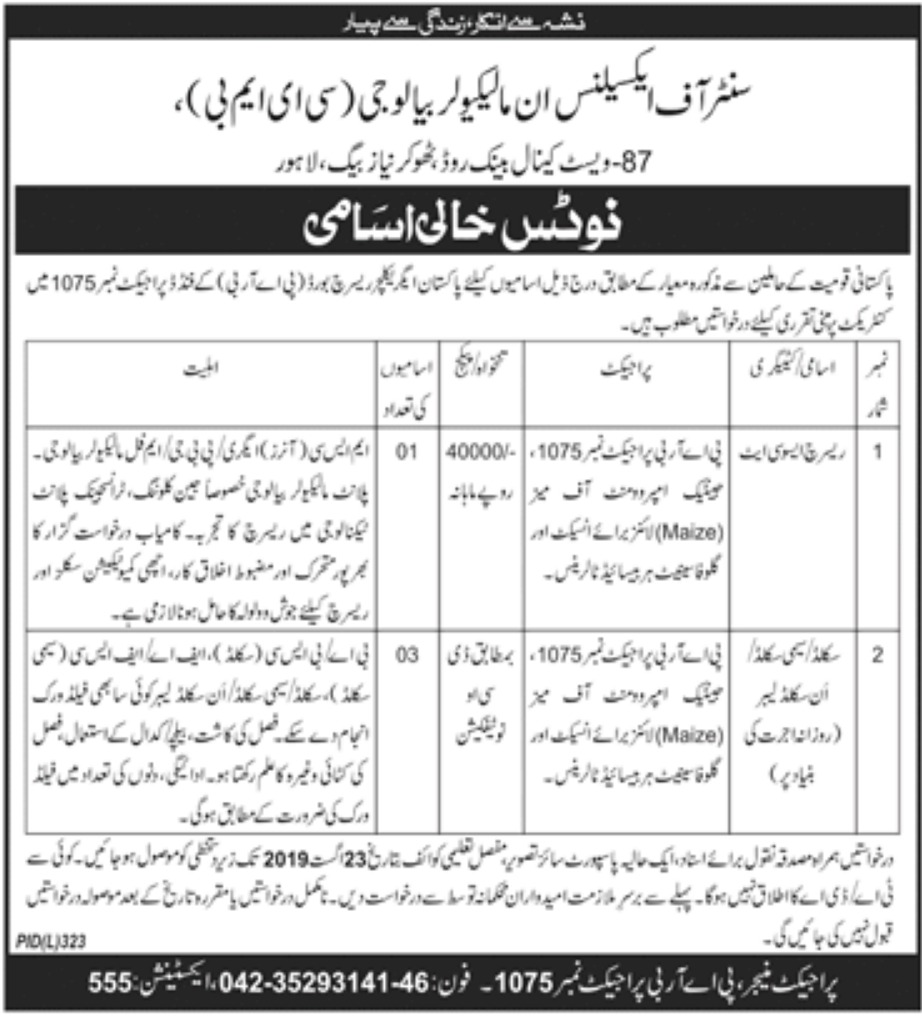 Centre of Excellence in Molecular Biology CEMB Lahore Jobs 2019