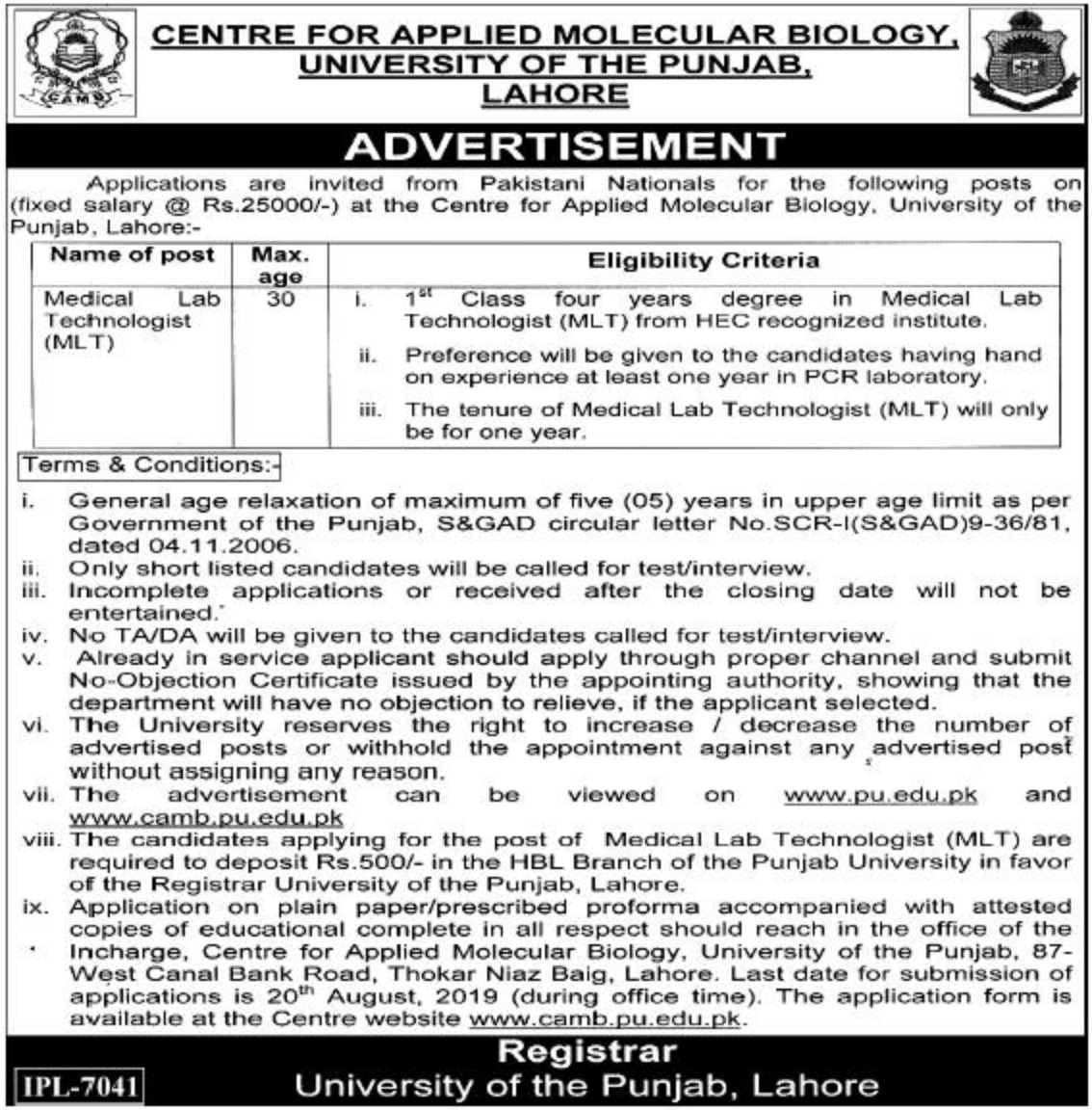 University of Punjab Lahore Jobs 2019 CAMB PU Application Form Download
