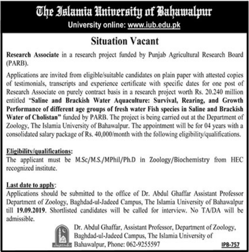 Islamia University of Bahawalpur IUB Jobs 2019