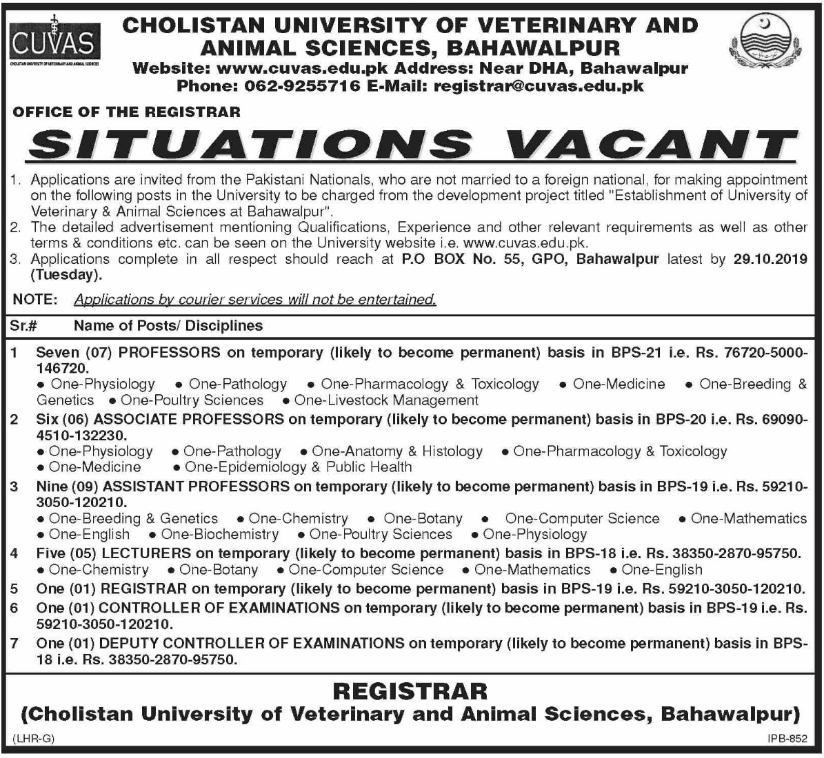 CUVAS Jobs 2019 Cholistan University of Veterinary & Animal Sciences Bahawalpur