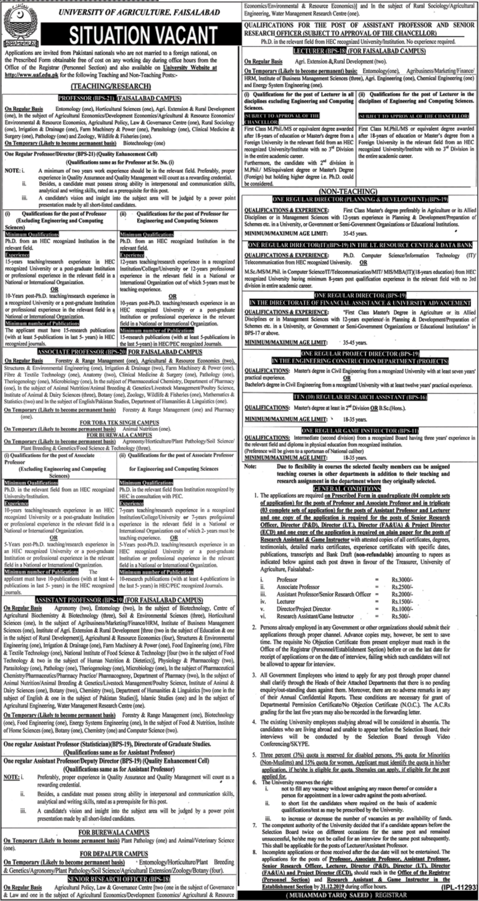 University of Agriculture Faisalabad Jobs 2019