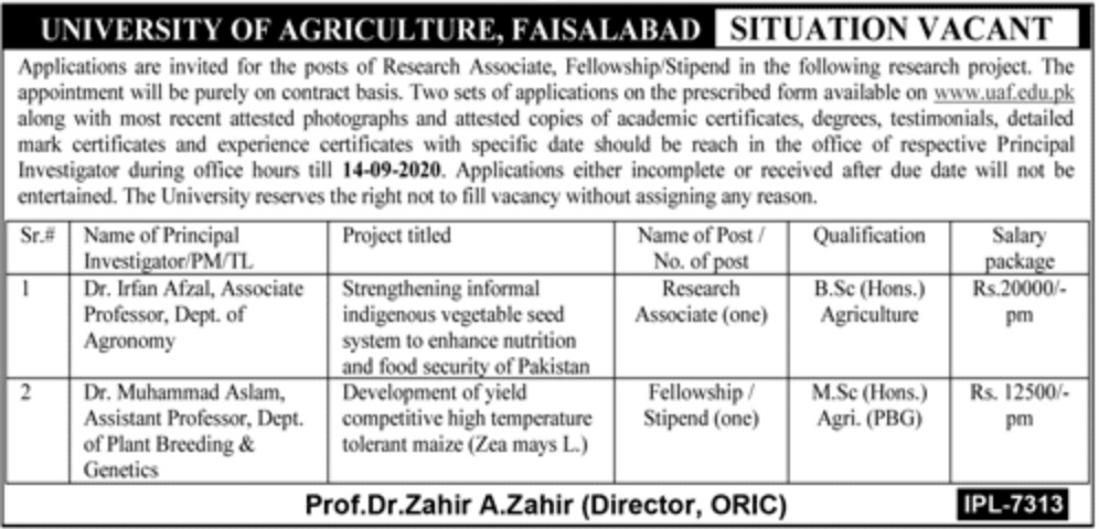 University of Agriculture Faisalabad Jobs August 2020