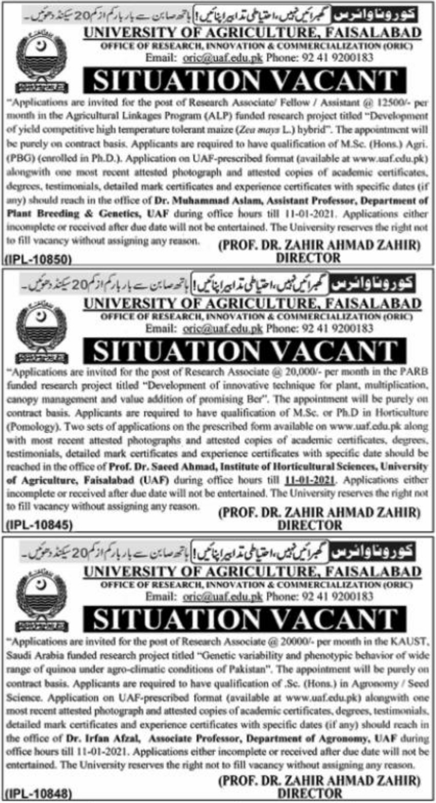 University of Agriculture Faisalabad Jobs December 2020