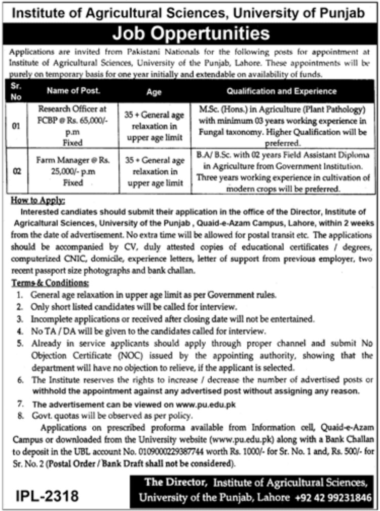 University of Punjab Lahore Jobs 2019 Institute of Agricultural Sciences Latest