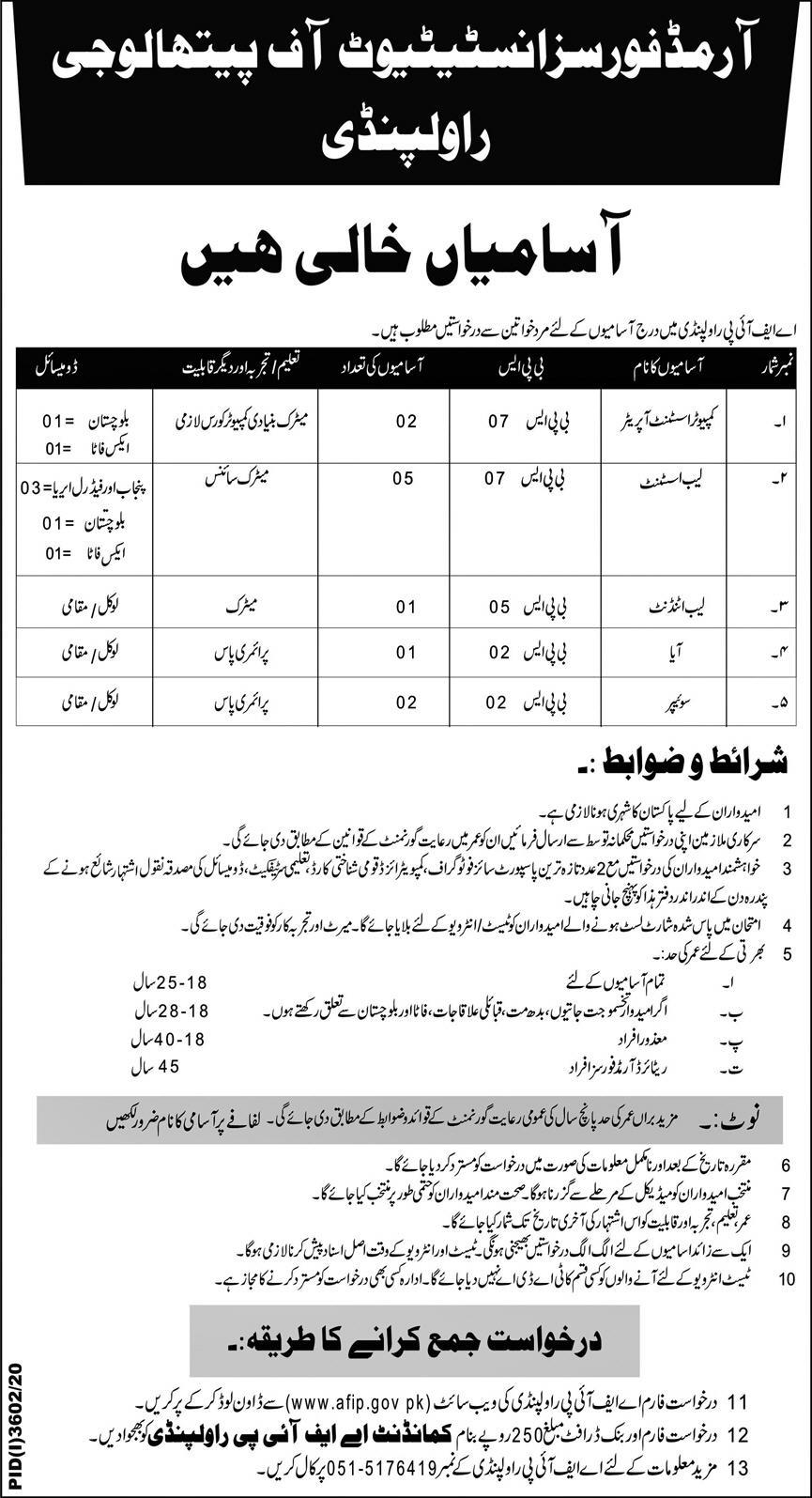 Armed Forces Institute of Pathology AFIP Rawalpindi Jobs January 2021